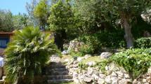 c0 garden detail 01