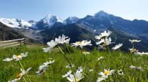 Scorcio Paesaggio Hotel Dolomiti