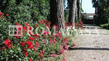 Ingresso Villa Aurelia -ROMACASA